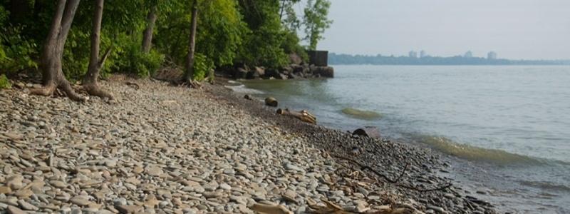 Lake Ontario Trails